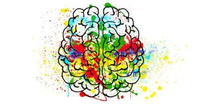 Gehirn bunt